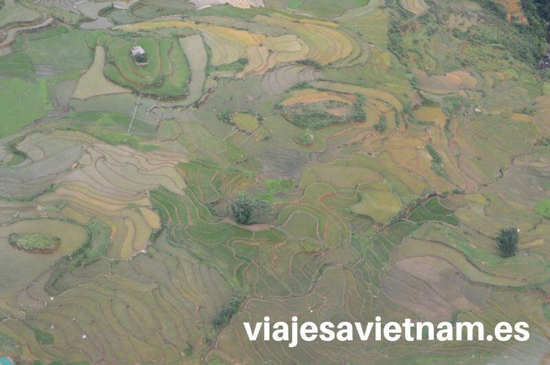 fansipan-vista-arrozales-funicular