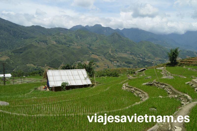 sapa-arrozales-montañas